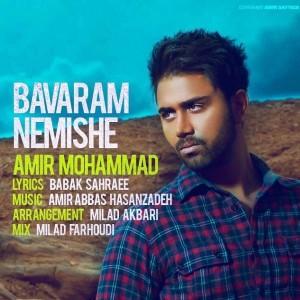Amir Mohammad Bavaram Nemishe 300x300 - متن آهنگ