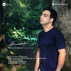 Meysam Jamshidpour Roozhaye Bi Kasi 300x300 - متن آهنگ روزهای بی کسی میثم جمشید پور