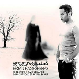 Ehsan Haghshenas Koja Miri 300x300 - متن آهنگ کجا میری احسان حق شناس