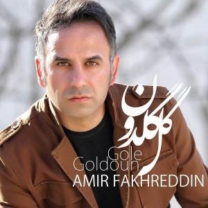 Amir Fakhreddin Gole Goldoon 300x300 - متن آهنگ جدید گل گلدون امیر فخرالدین