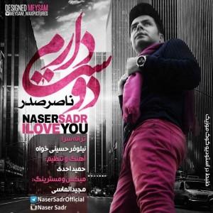 متن آهنگ دوست دارم ناصر صدر
