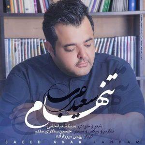متن آهنگ تنهام سعید عرب