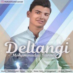 Mohammad Ali Sanaei Deltangi 300x300 - متن آهنگ جدید دلتنگی محمدعلی ثنایی