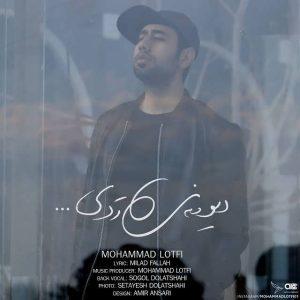 متن آهنگ جدید دیوونه ی ردی محمد لطفی
