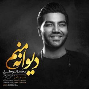 متن آهنگ دیوانه منم محمد زند وکیلی