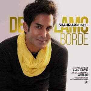 Shahriar Khatibi Delamo Borde 300x300 - متن آهنگ دلمو برده شهریار خطیبی