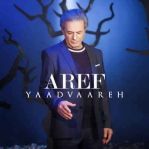 Aref Yaadvaareh 300x300 - متن آهنگ یادواره عارف