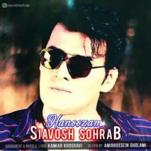 Siavosh Sohrab Hanoozam 300x300 - متن آهنگ هنوزم سیاوش سهراب