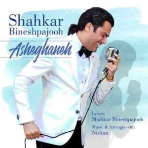 Shahkar Bineshpajooh 300x300 - متن آهنگ عاشقانه شاهکار بینش پژوه