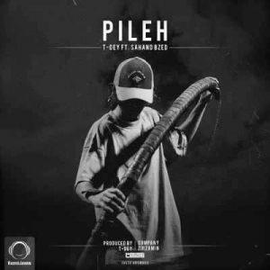 T Dey Pileh 300x300 - متن آهنگ پیله تی دی