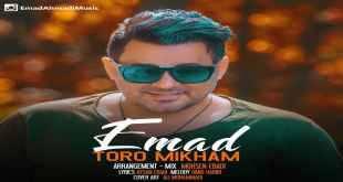 Text Music Emad Toro Mikham - متن آهنگ تورو میخوام عماد