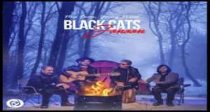 Text Music Black Cats Jonoon 300x160 - متن آهنگ