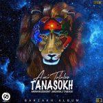 Tataloo Tanasokh 150x150 - متن آهنگ تناسخ امیر تتلو