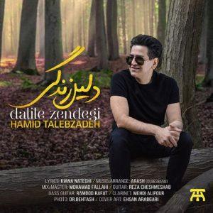 hs Text Music Hamid Talebzadeh Dalile Zendegi 300x300 - متن آهنگ دلیل زندگی حمید طالب زاده