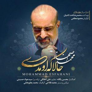 متن آهنگ حالا که اومدی محمد اصفهانی