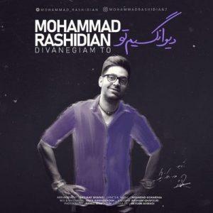 hs دیوانگیم تو محمد رشیدیان 300x300 - متن آهنگ دیوانگیم تو محمد رشیدیان