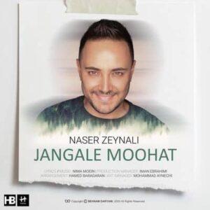 جنگل موهات ناصر زینلی 300x300 - متن آهنگ جنگل موهات ناصر زینلی