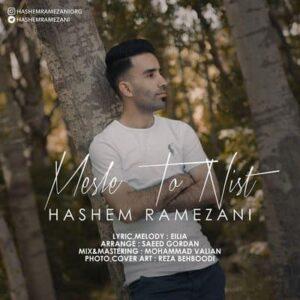 متن آهنگ مثل تو نیست هاشم رمضانی 300x300 - متن آهنگ مثل تو نیست هاشم رمضانی