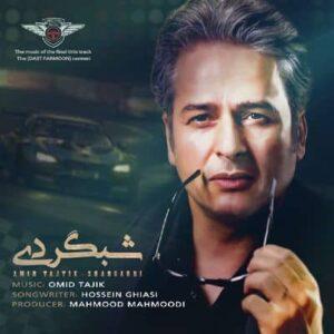 متن آهنگ شبگردی امیر تاجیک