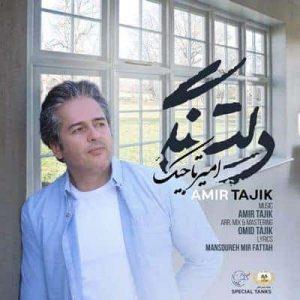 متن آهنگ دلتنگی امیر تاجیک